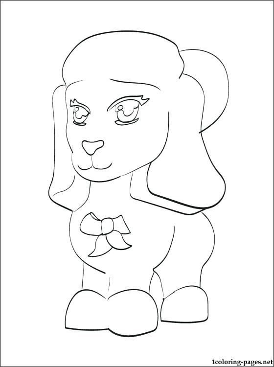 560x750 As Well As A Fat Chow Chow Poodle Coloring Page Free Printable