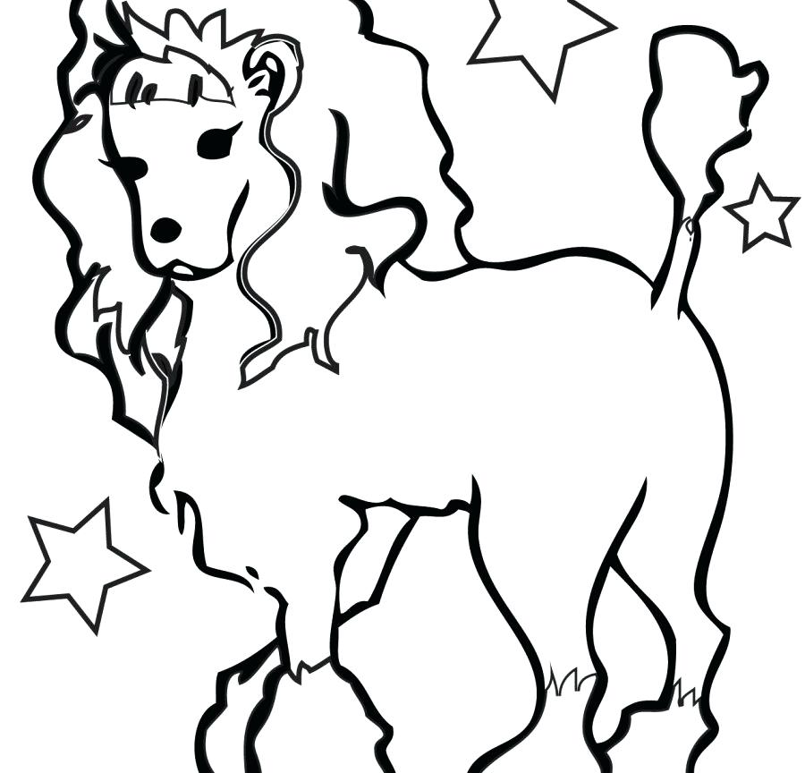 900x864 Poodle Coloring Pages With Animal Dog Printable Animals Puppy Free
