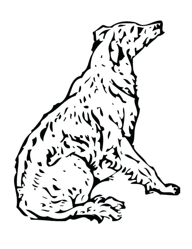 618x800 Free Poodle Coloring Pages Poodle Coloring Page Pin Color Page