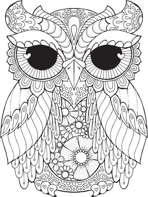 497x659 Owl Pictures To Colour In Best Owl Coloring Pages Ideas