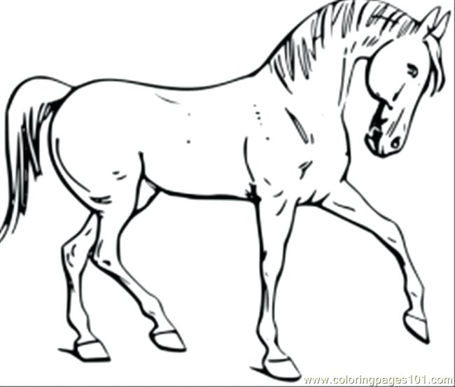 650x553 Coloring Picture Of Horse Horse Coloring Pages Prancing Pinto