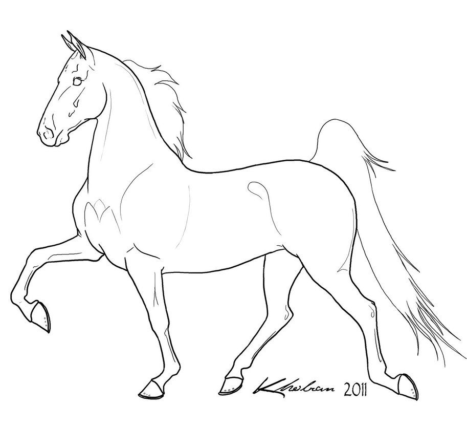 913x875 Gaited Horse Lineart