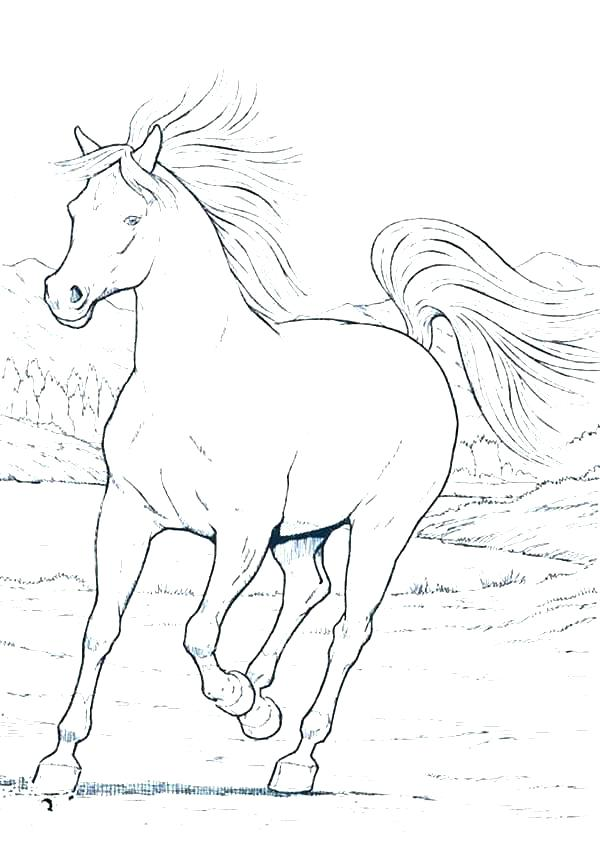 600x847 Horse Coloring Games Play Free Printable Coloring Horse Coloring