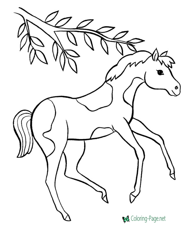 670x820 Horse Coloring Pages Prancing Pinto