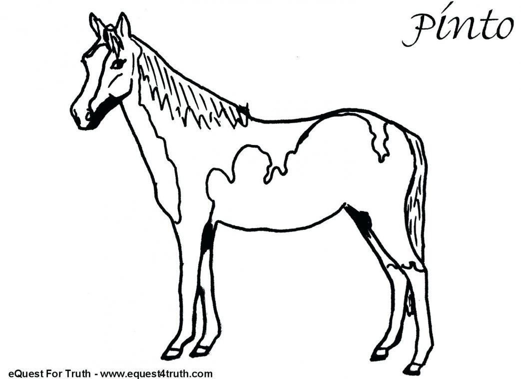 1043x758 Embroidery Horse Funny In Horses Coloring Page Pages