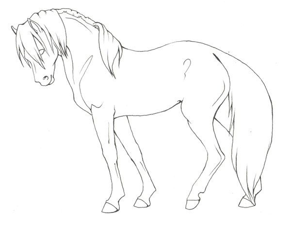 600x464 A Pinto Horse Has A Coat Color That Consists Large Patches