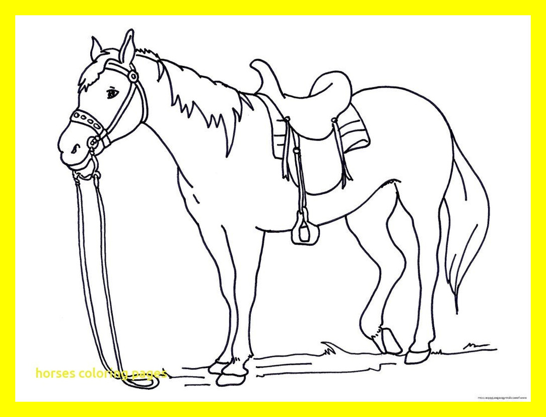 1084x828 Running Horse Coloring Pages