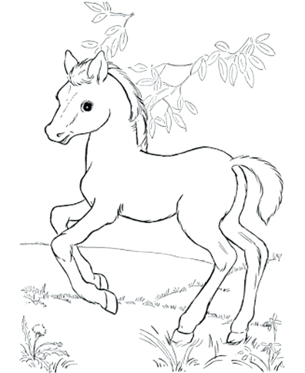 1024x1252 Coloring Pages Free Horse Coloring Pages A View Full Size