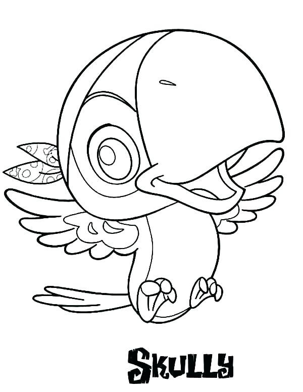 600x776 Pirate Hat Coloring Page Hat Coloring Page Pirate Hat Coloring