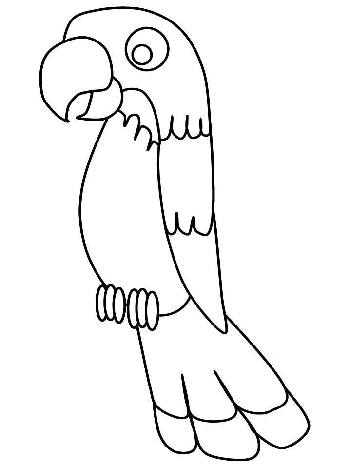 718x957 Parrot Coloring Page Print Out On Red Construction Paper And Glue