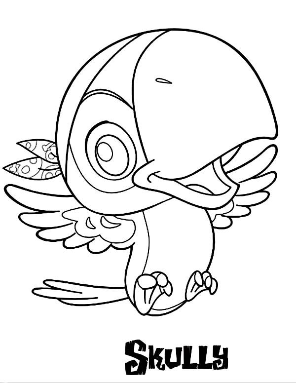 600x776 Pirate Parrot Coloring Pages Best Parrot Coloring Pages Images