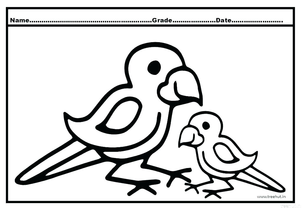 1024x709 Coloring Pages Parrot Coloring Pages Animals Parrot Coloring Pages