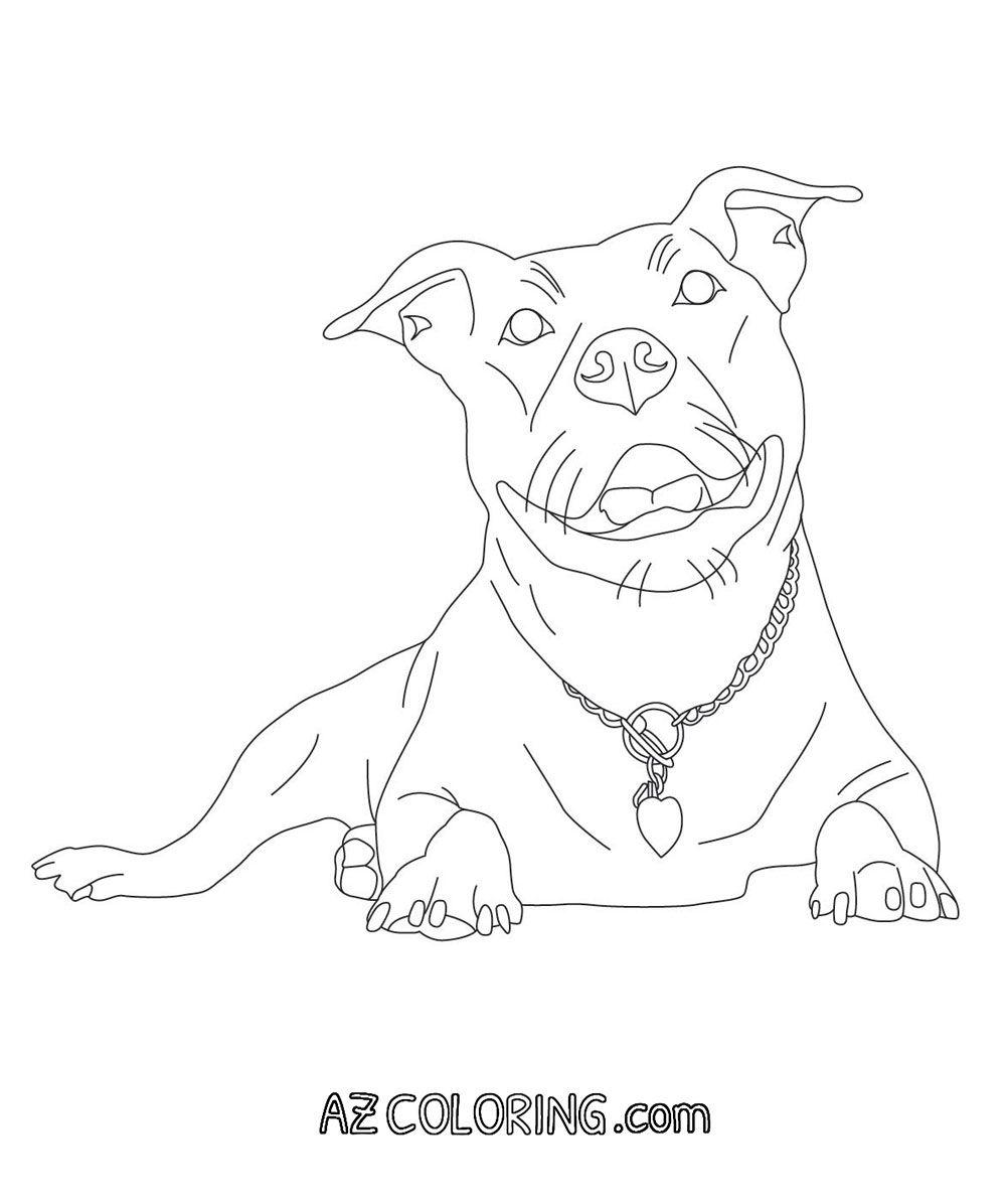 1000x1196 Pitbull Coloring Page Color Me In Clip Art