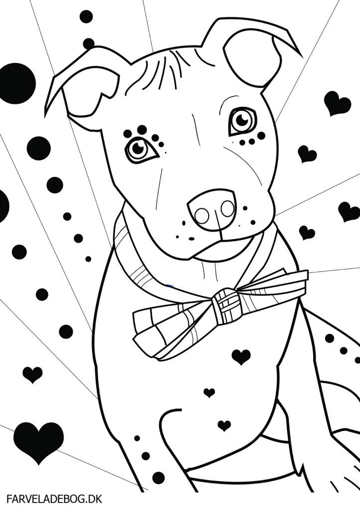 723x1024 Pit Bull Coloring Pages, Pit Bull Coloring Pages Az Coloring