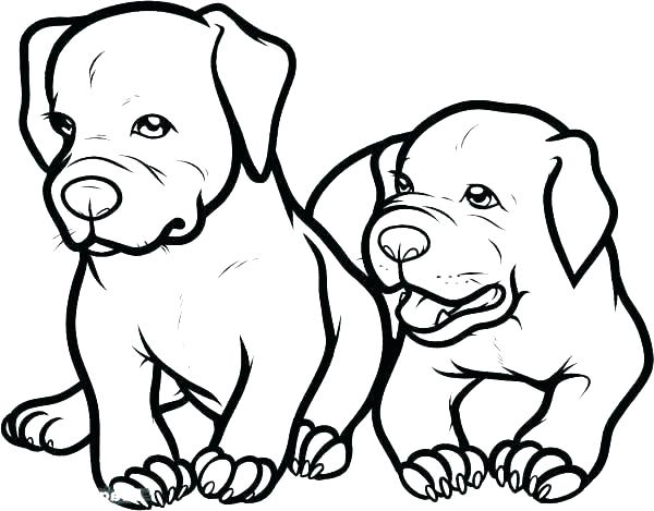600x469 Pitbull Coloring Page Minimalist Coloring Pages Best Of Dog Page