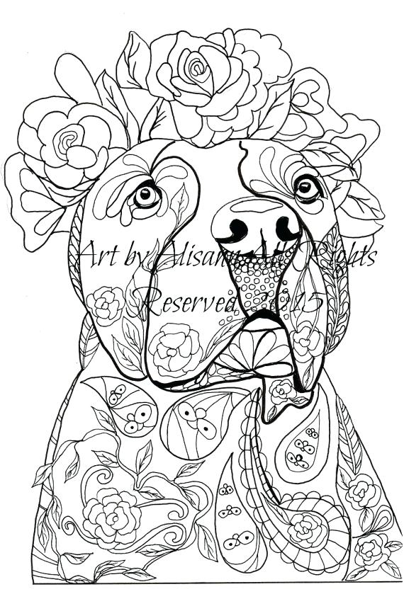 570x863 Pit Bull Coloring Pages Coloring Pages Elegant Pit Bull Terrier