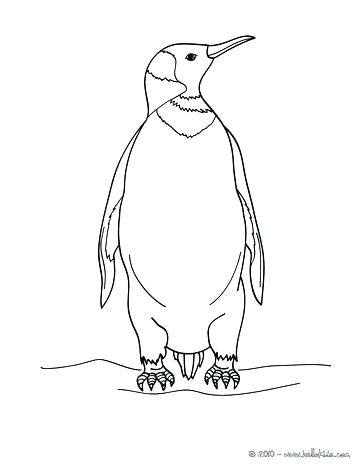 363x470 Printable Penguin Coloring Pages Yoschool Site