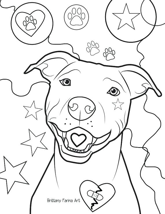 570x738 Pitbull Coloring Page Coloring Page Plain Coloring Pages Known