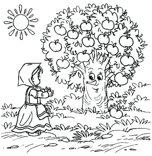 600x617 Apple Tree Coloring Page Plain Ideas Tree Coloring Page Coloring