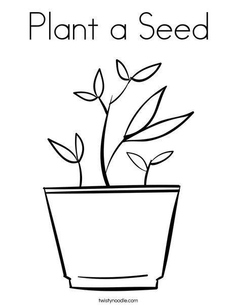468x605 Plant A Seed Coloring Page