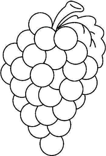 349x512 Grapes Coloring Page Grapes Coloring Page Plate Coloring Page