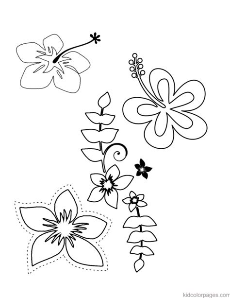 474x613 Hawaiian Flower Coloring Pages Coloring Home, Hawaiian Flower