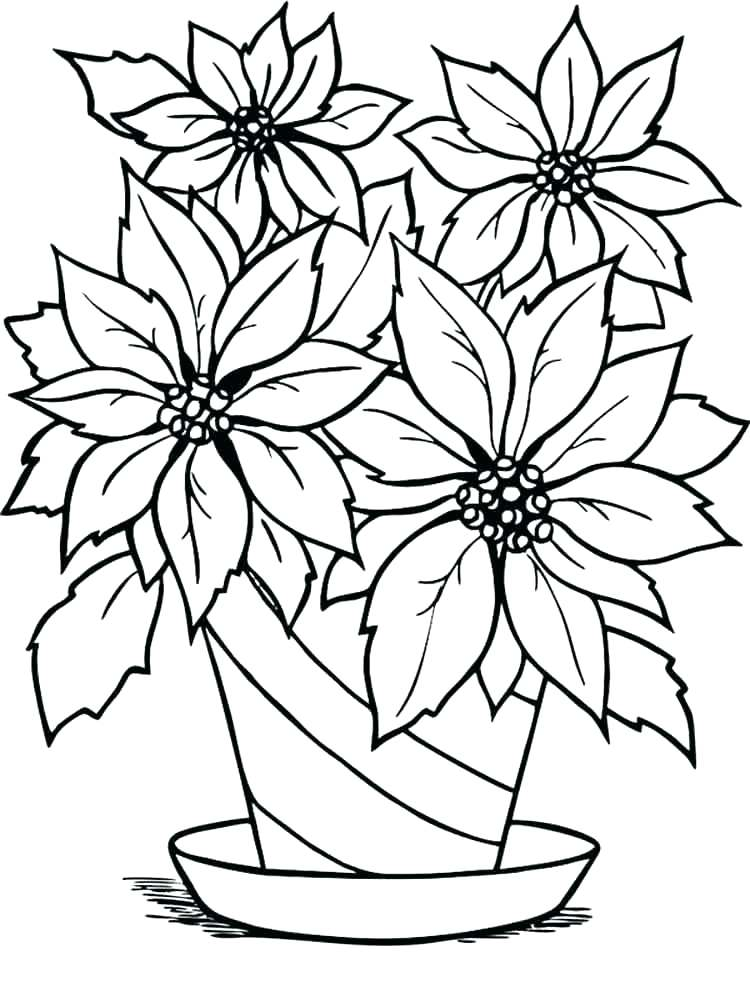 poinsettia coloring pages for 2021, [Printable and ...