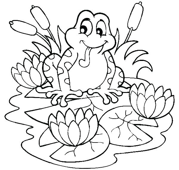 600x569 Frog Coloring Page Frog Coloring Page Coloring Page Of A Frog