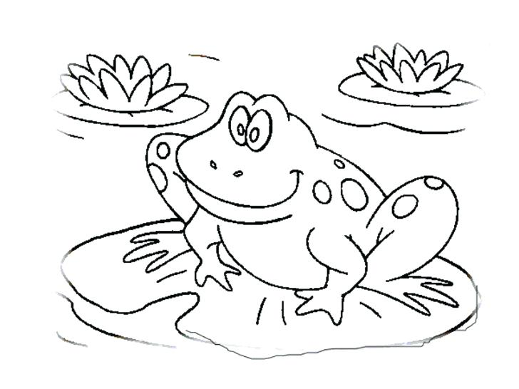 728x546 Frogs Coloring Pages Classy The Frog Coloring Es Crayola Photo
