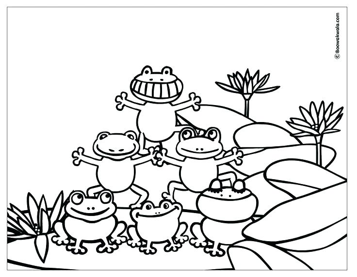 736x572 Amusing Coloring Page Of A Frog Printable Coloring Page Tree Frog