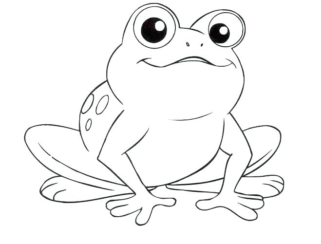 659x501 Printable Frog Coloring Pages Best Tree Frog Coloring Page Online