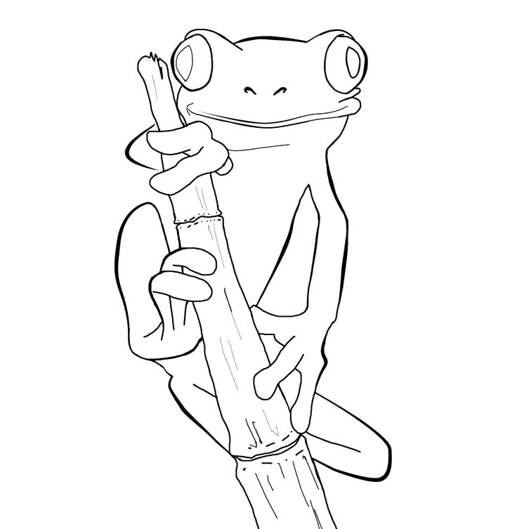 736x753 Cartoon Frog Coloring Pages