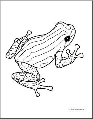 304x392 Clip Art Frogs Pasco Poison Dart Frog