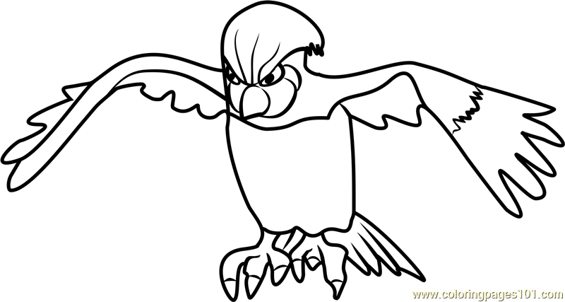 800x427 Pidgeotto Coloring Pages