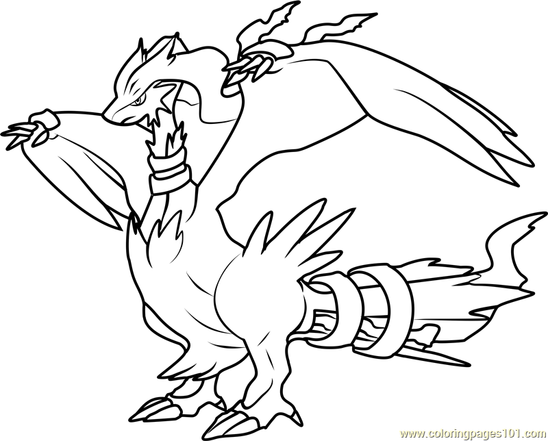 800x644 Pokemon Coloring Pages Reshiram