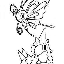 220x220 Wingull, Mudkip, Pikachu, Treecko And Torchic Coloring Pages