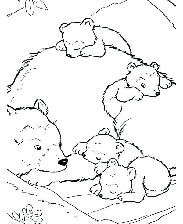 600x734 Coloring Pages Of Polar Bears Coloring Pages Draw A Polar Bear