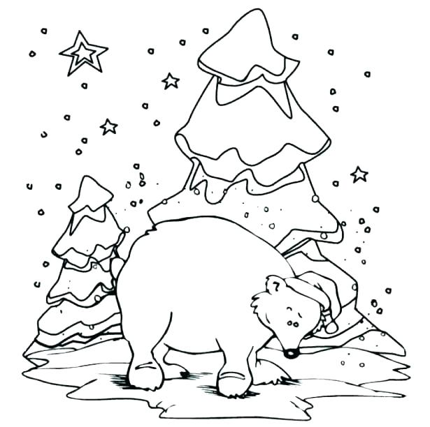 615x612 Polar Bears Coloring Pages Polar Animals Coloring Pages Polar