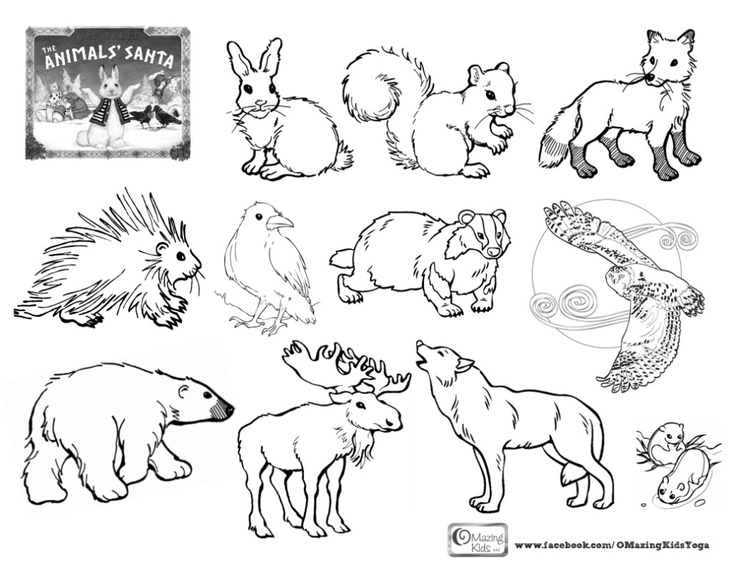 1024x789 Arctic Animals Coloring Pages