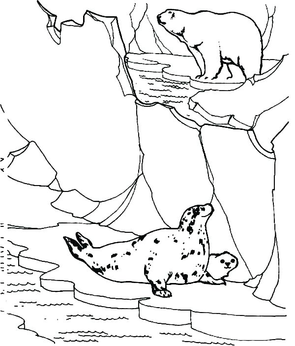 600x703 Arctic Animals Coloring Pages Arctic Animal Coloring Pages Arctic