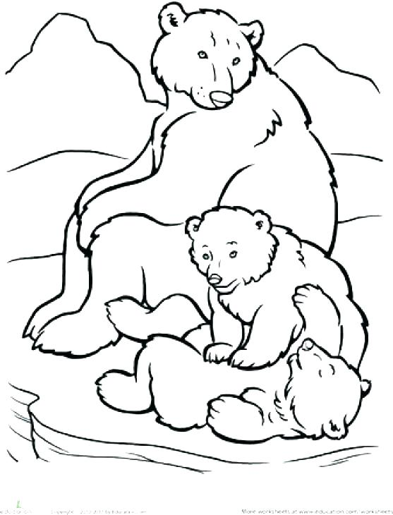 557x730 Arctic Animals Coloring Pages Free Polar Bear Baby Printable Beau