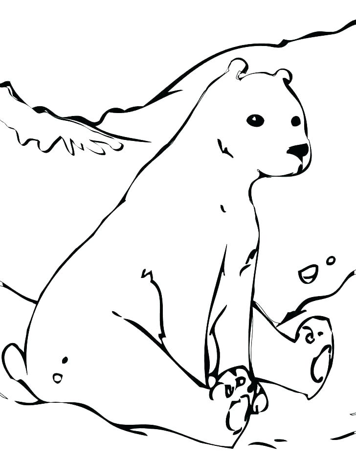 728x942 Polar Bear Color Page Polar Bear Coloring Pages Polar Bear Polar