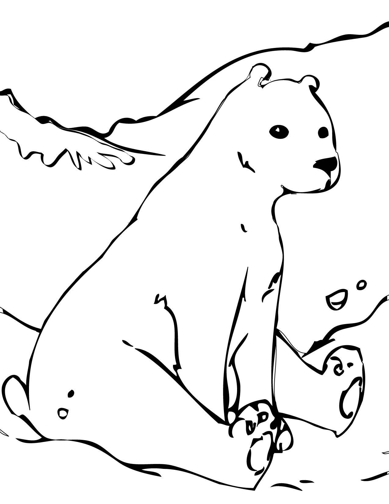 1275x1650 Polar Bear Coloring Page