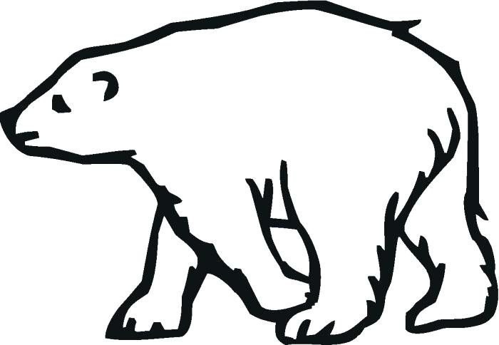 700x484 Polar Bear Outline Early Play Templates Polar Bear Color In Polar
