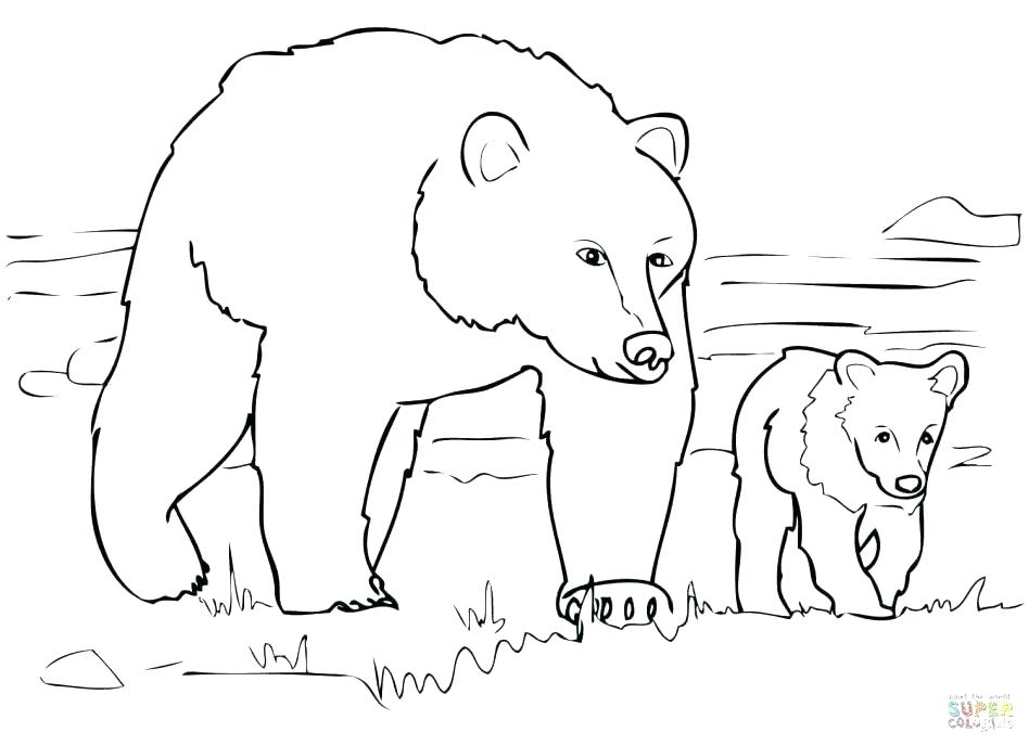 Polar Bear Coloring Pages For Preschoolers