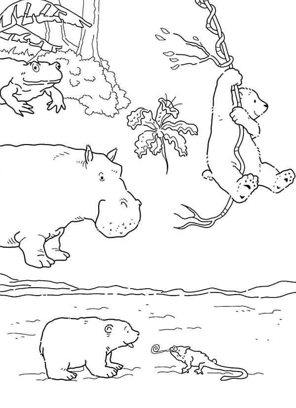 600x827 Polar Bear Coloring Pages Printable Polar Bear Coloring Pages