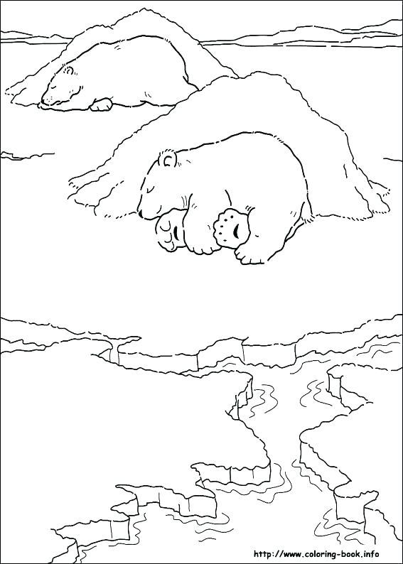 567x794 Polar Bear Coloring Sheets Bear Coloring Pages Preschool Polar