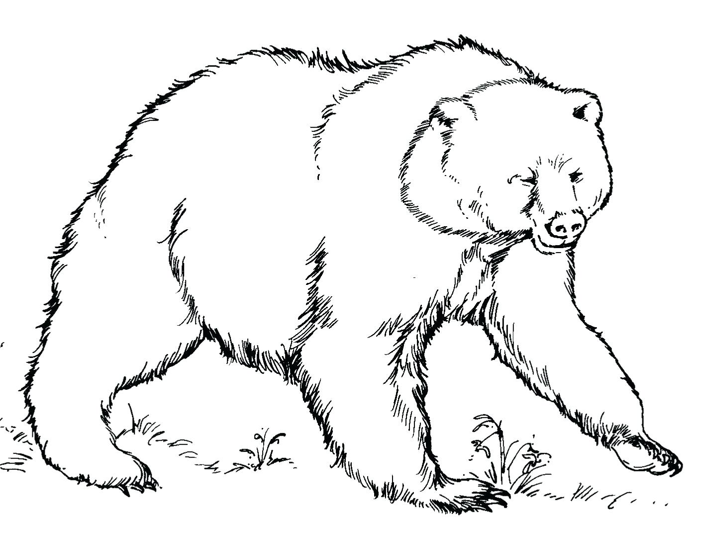 1409x1080 Coloring Pages Polar Bear Coloring Pages Baby Polar Bear