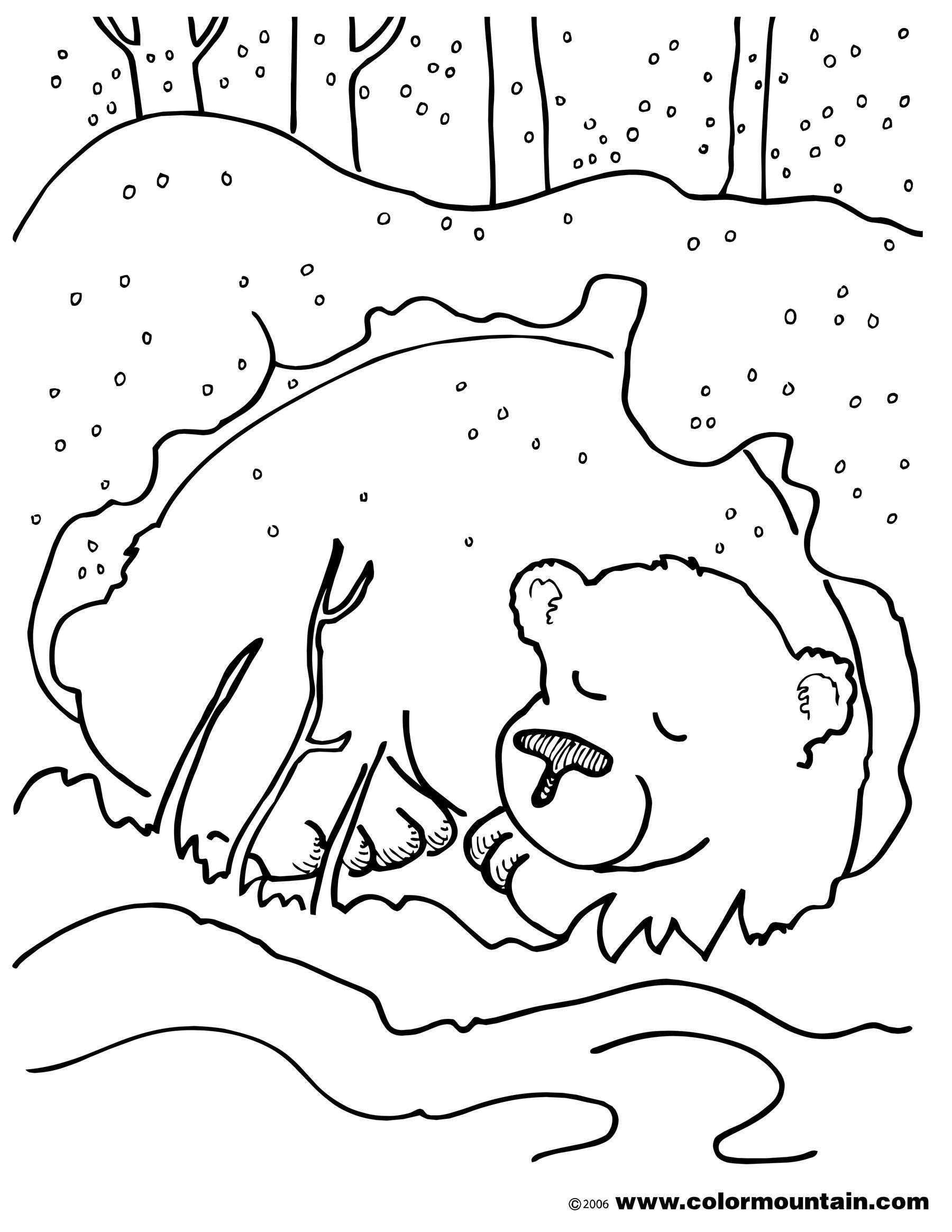 1800x2329 Hibernating Bear Color Sheet Coloring Page Preschool