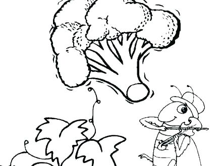 440x330 Polar Bear Coloring Pages For Preschoolers Jgheraghty Site